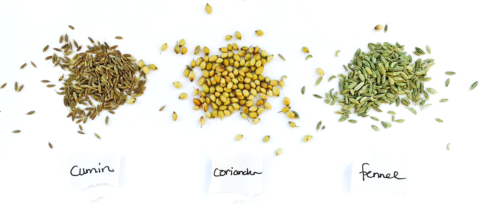 ccf tea | ayurvedic detoxifying & rejuvenating decoction